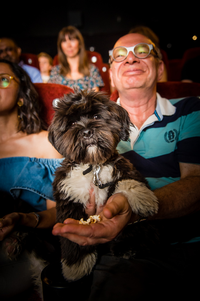 Dog Screening Picturehouse -24