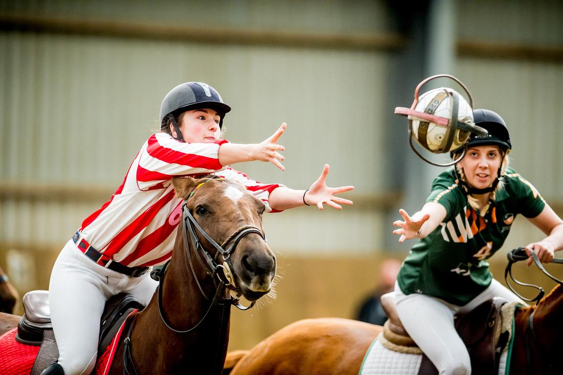 Horseball best-58