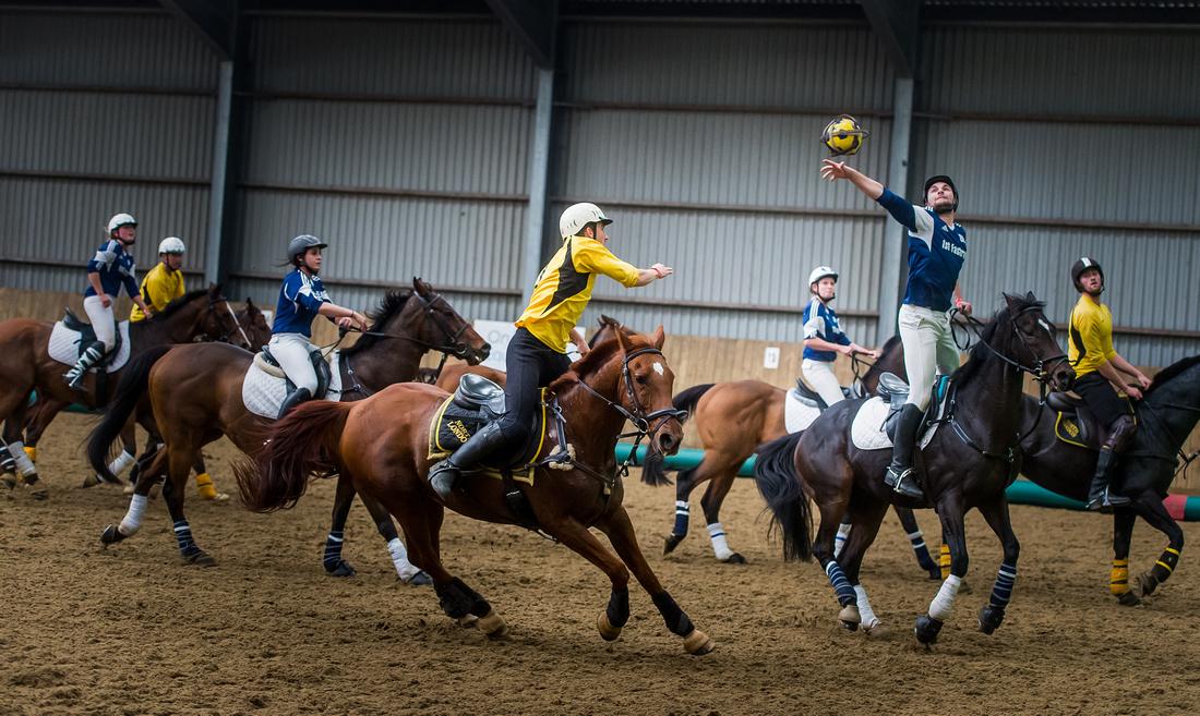 Horseball best-70