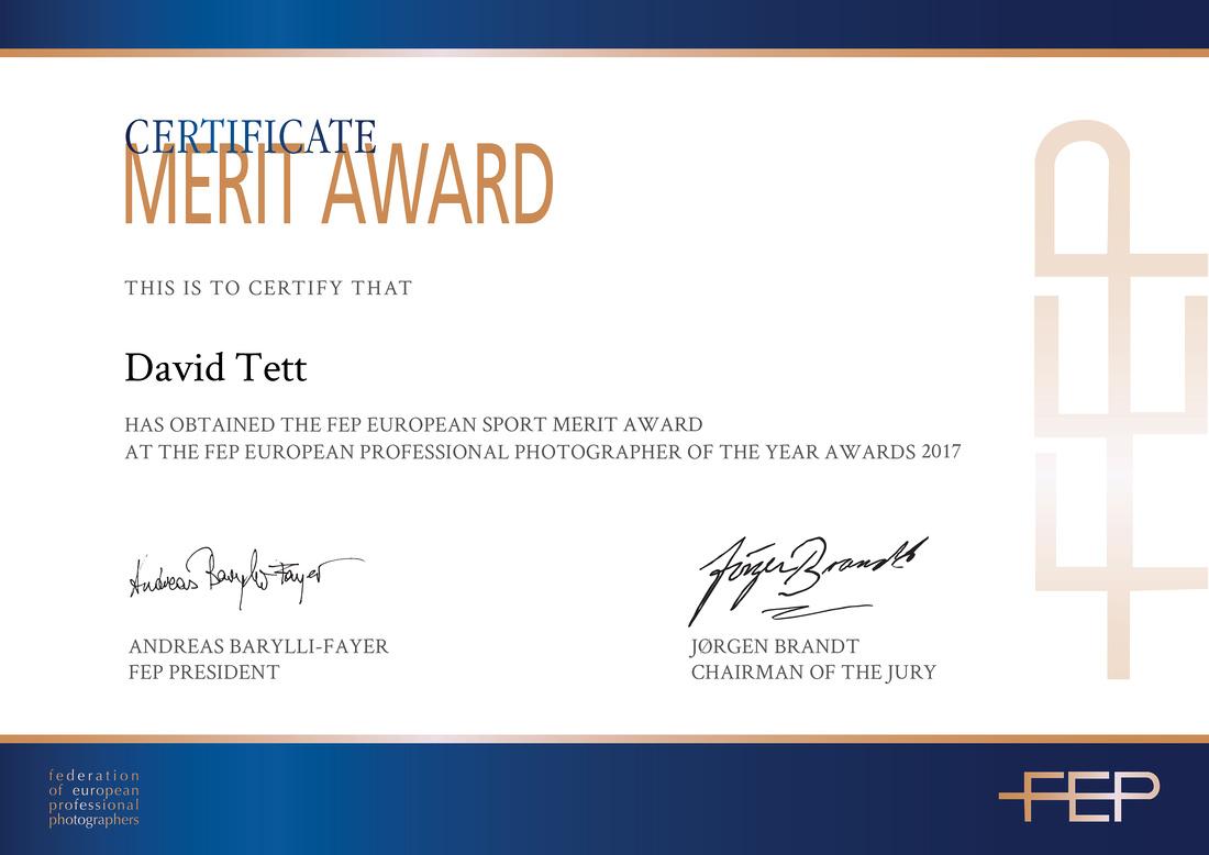 FEP_Certificate_Award_David Tett
