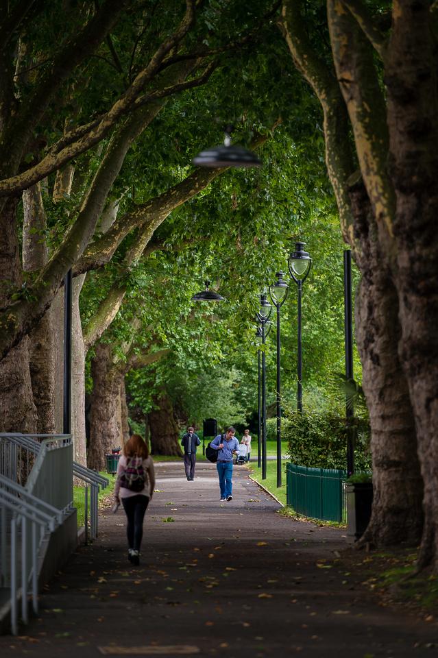 Lambeth Green Flag Parks-28