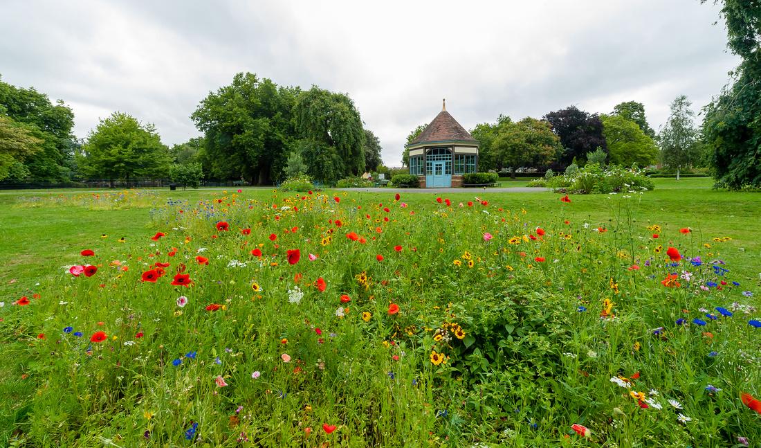 Lambeth Green Flag Parks-98